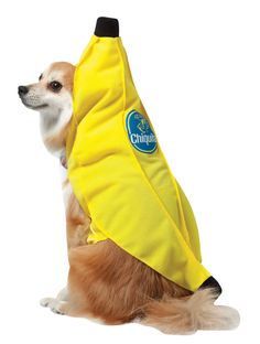 This Chiquita Banana Dog Costume features the one piece banana shaped top that your dog is sure to enjoy!