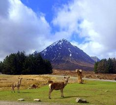 24 Stunning Natural Wonders in Europe Travel Ideas, Travel Inspiration, Travel Tips, Vacation Trips, Vacations, Glencoe Scotland, West Highland Way, Travel Goals, Natural Wonders
