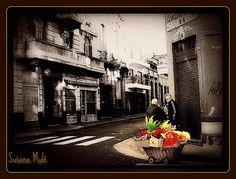 carrito de flores Copyright © Susana Mulé