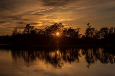 Golden Sunburst at the LakeNew JerseyFebruary DeLucoTerry D PhotographyGolden Sunburst at sunset on Lake Horicon Lakehurst New Jersey New Jersey, Dusk, Fine Art America, Fine Art Prints, Wall Art, Sunset Lake, World, Photography, Outdoor