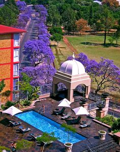Sheraton hotel Pretoria, South Africa love the jacarandas. Pretoria, Places Around The World, Around The Worlds, Argentine, Verona, Camping, Africa Travel, Countries Of The World, Historical Sites