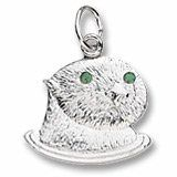 Seaotter Charm in White Gold - http://www.wonderfulworldofjewelry.com/jewelry/charms/clasp/seaotter-charm-in-white-gold-com/ - Your First Choice for Jewelry and Jewellery Accessories
