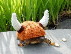This woman is a genius - I crochet and I would never have thought of tortoise cozies. I'm going to buy one for my box turtle and one for my leopard tort! Viking helmet tortoise cozy - made to order, your choice of colors Tortoise Food, Sulcata Tortoise, Tortoise Turtle, Tortoise Care, Tortoise Habitat, Baby Tortoise, Reptile Habitat, Animals And Pets, Baby Animals