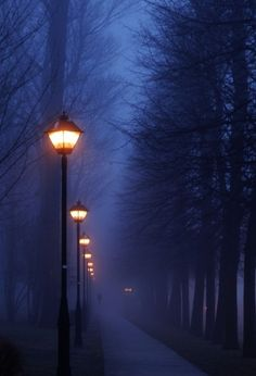 Fog, Paris, France    photo via nita  Source: bluepueblo
