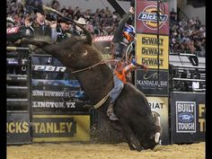 Asteroid ejects Austin Meier in the Iron Cowboy finals!  (andy watson/bullstockmedia.com)