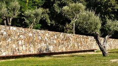 A map of the best contemporary landscape architecture projects from around the world. Landscape Architecture Design, Landscape Walls, Rock Wall, Public Garden, Brickwork, My Secret Garden, Garden Stones, Contemporary Landscape, Cool Walls
