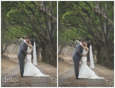 Posts about Anderland Wedding Venue written by detoi photography Baie Dankie, Wedding Venues, Weddings, Wedding Dresses, Photography, Fashion, Wedding Reception Venues, Bride Dresses, Moda