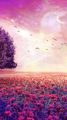 Fairy Dreamy Natural Red Garden  #iPhone #5s #Wallpaper