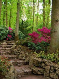garden-paths_34.jpg