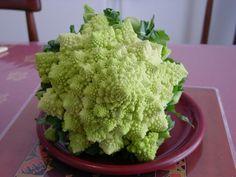 fractal brocolli