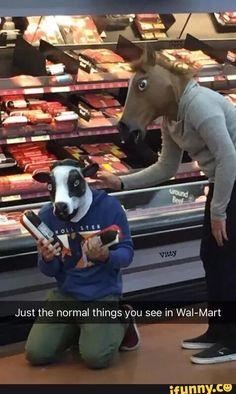 walmart, ground, beef, cow