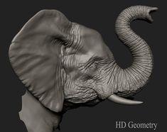 ArtStation - Elephant, Luiz Alves