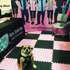 Come join Retro Stylist Wear at All American near Chicago next week! Www.retrostylistwear.com #petgroomers, #groomers, #doggeoomers