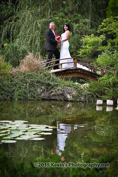 1000 images about albuquerque botanical gardens wedding venue on pinterest botanical gardens for Botanical gardens albuquerque new mexico
