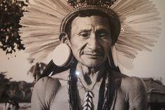 Colección 'La luz de la selva amazónica'