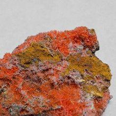 Rare Round Crocoite Cluster
