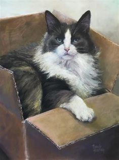"Daily Paintworks - ""Cat in the Box"" - Original Fine Art for Sale - © Pamela Hamilton"