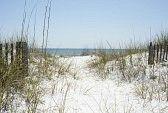 18954954-beach-path-near-pensacola-beach-florida.jpg 168×113 pixels