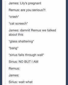 Oh my goodness... Sirius...