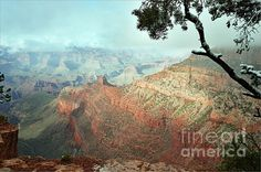 Great image, Debby. The clarity of the foreground contrasted with the cloudy/misty background reveals how things can change in an instant in the Grand Canyon. Congrats on 400 views!