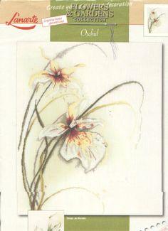 Gallery.ru / Фото #2 - орхидея - irinakiz