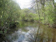 Río #Yuso en los Picos de Europa en la provincia de León.
