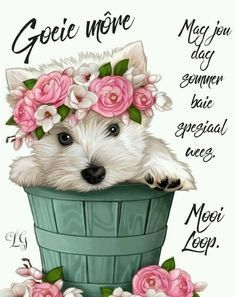 Morning Blessings, Good Morning Wishes, Good Morning Quotes, Lekker Dag, Evening Greetings, Afrikaanse Quotes, Goeie More, Special Quotes, Deep Thoughts