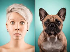 27 Dogs That Look Like Their Owners