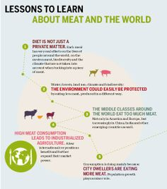 """A new report, """"Meat Atlas: Facts and Figures About the Animals We Eat,"""" presents some alarming facts about the global impact of industrial m..."""