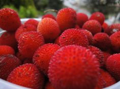Medronhos Textures Patterns, Strawberry, Fruit, Plants, Food, Blackberries, Meal, Eten, Strawberry Fruit