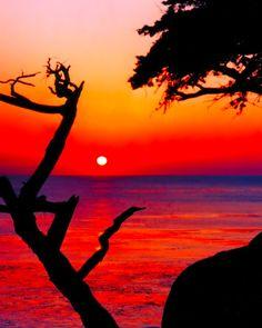 ✯ Left Coast Sunset