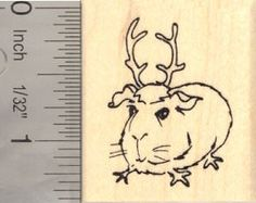 Amazon.com: Small Christmas Guinea Pig in Reindeer Antlers Rubber Stamp: Arts, Crafts & Sewing