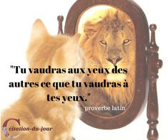 proverbe latin
