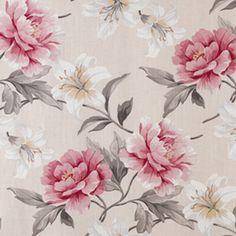 Chatsworth_Rose