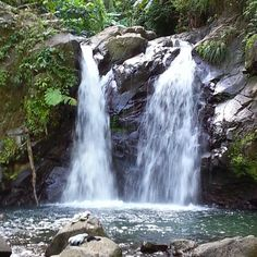 River Didier, Martinique