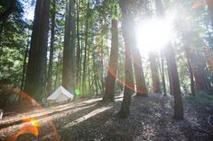SF Gate names the best places to go glamping in the Bay Area.