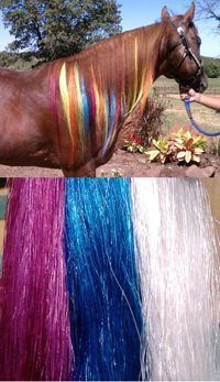 Gypsy Tails Horse Hair Extensions | Horse Mane Extensions