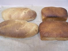 Fresh Whole Wheat and Olive French Bread