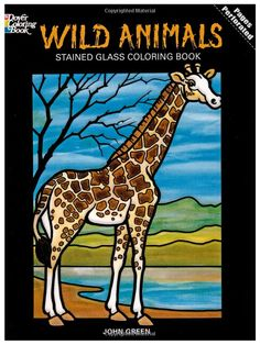 Amazon.com: Wild Animals Stained Glass Coloring Book (Dover Nature Stained Glass Coloring Book) (9780486269825): John Green, Coloring Books: Books