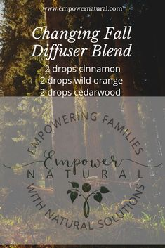 Fall and other season changes can cause a bit of a shift in our immune system as well as our body and mind.  Consider putting this diffuser blend in your diffuser or you can create a DIY Spray bottle with some alcohol, the oils, and some water.