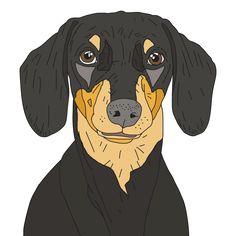 dachshund-puppy616544-prints.jpg (700×700)