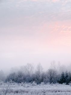 Winter white + pink sky