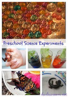 preschool science experiments | hsclassroom.net