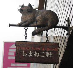Cat sign.