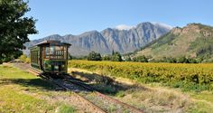 The Franschhoek Wine Tram tour: includes downloadable timetable