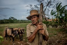 A farmer approached foreigners to offer them a tour on horseback in the countryside near Vinales, Cuba on January 25, 2016. Cuba at times can feel like a nation abandoned. The aching disrepair of its cities, the untamed foliage of its countryside, the orphaned coastlines Ñ a half-century of isolation has wrapped the country in decay. Yet few places in the world brim with as much life as Cuba, a contrast drawn sharper amid its faded grandeur.