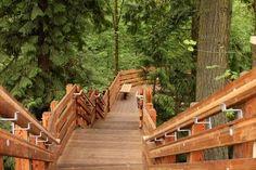 Cedar Mill Falls