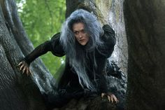 "Little depth in an average 'Into the Woods': Meryl Streep does a great job as The Witch — but then, when doesn't she do a great job? Her performance, which is quite physical, and her singing are laudable, especially in ""Stay With Me."" She is the character who brings the others together — and these are people familiar to us because they populate the Brothers Grimm fairy tales: ""Little Red Riding Hood,"" ""Jack and the Beanstalk,"" ""Cinderella"" and ""Rapunzel."""
