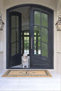 Double Front Entry Doors - French Swag Panel Design - Finished in ...