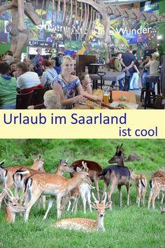 Unser Wochenende im Saarland - schau mal vorbei (Pressereise)!
